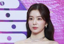 """[전문] 스타일리스트 갑질 논란. 아이린 사과 """"상처 드려 죄송…후회·반성"""""""